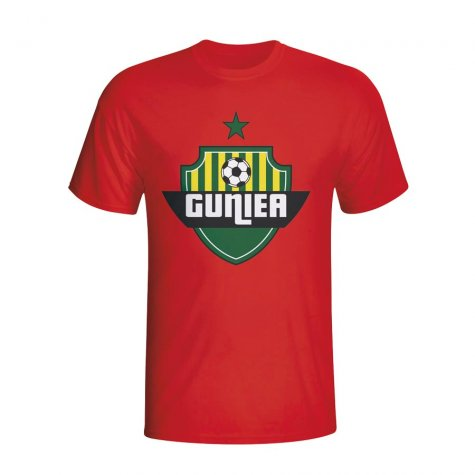 Guinea Country Logo T-shirt (red) - Kids