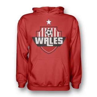 Wales Country Logo Hoody (red) - Kids