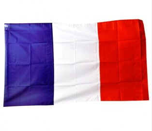 France World Cup Flag