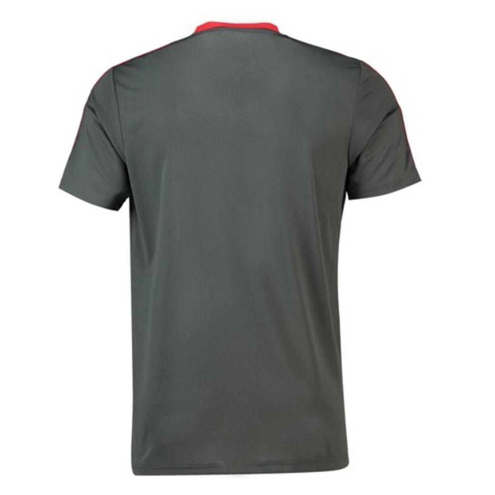 88d4f0ca2744a 2018-2019 Bayern Munich Adidas Training Shirt (Utility Ivy)  CW7262  -  Uksoccershop