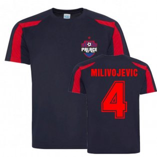 Luka Milivojevic Crystal Palace Sports Training Jersey (Navy-Red)