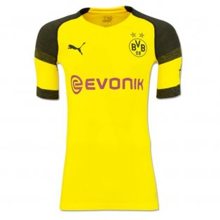 2018-2019 Borussia Dortmund Puma Authentic evoKNIT Home Football Shirt