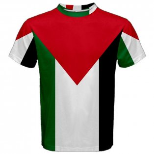 Palestine Flag Sublimated Sports Jersey - Kids