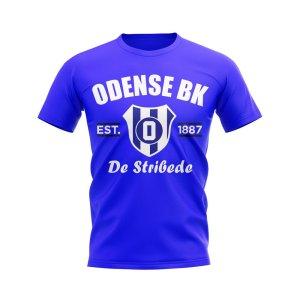 Odense Established Football T-Shirt (Royal)