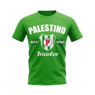 Palestino Established Football T-Shirt (Green)
