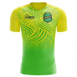 2019-2020 Norwich Home Concept Football Shirt - Womens