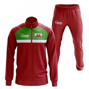 Wales Concept Football Tracksuit (Red)