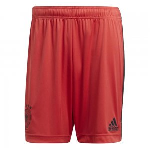 2020-2021 Germany Home Adidas Goalkeeper Shorts (Red)
