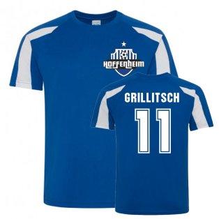 Florian Grillitsch Hoffenheim Sports Training Jersey (Blue)