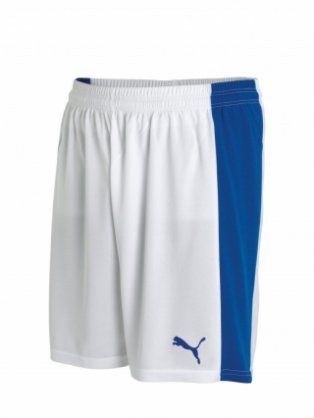 Puma Powercat 5.12 Team Shorts (white-blue)