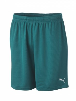Puma Vencida Team Shorts (green)