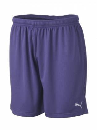 Puma Vencida Team Shorts (purple)
