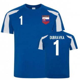 Slovakia Sports Training Jerseys (Dubravka 1)
