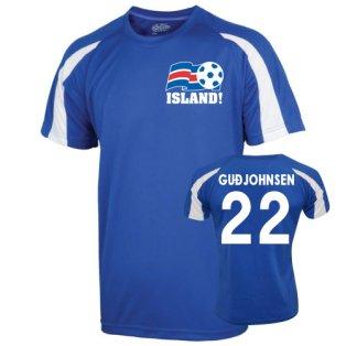 2016-17 Iceland Sports Training Jersey (Gudjohnsen 22)