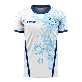 Antarctica 2020-2021 Home Concept Football Kit (Libero)
