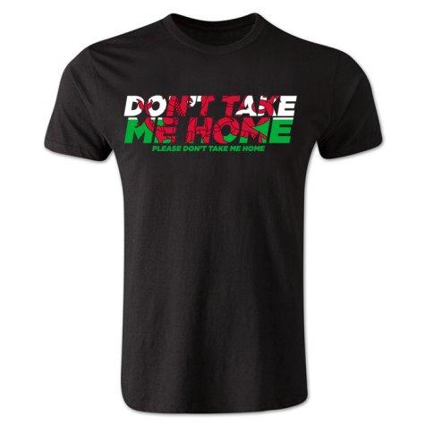 Dont Take Me Home - Wales T-Shirt (Black) - Kids