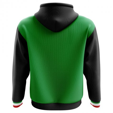 2018-2019 Mexico Home Concept Football Hoody