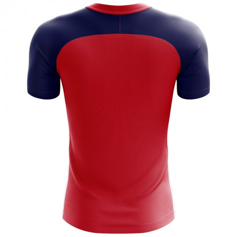 2018-2019 Norway Flag Concept Football Shirt (Kids)