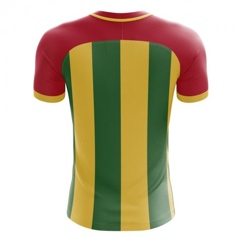 2020-2021 Ghana Home Concept Football Shirt (Your Name)