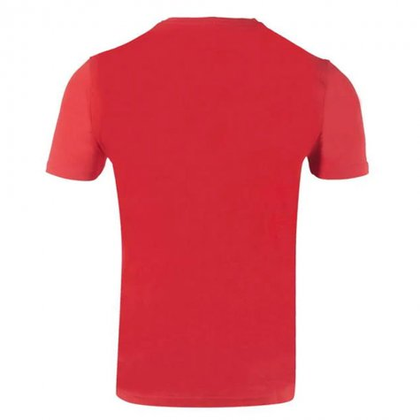 Wales 2021 Polyester T-Shirt (Red)