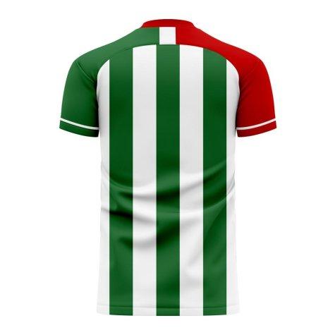 Bursaspor 2020-2021 Home Concept Football Kit (Airo)