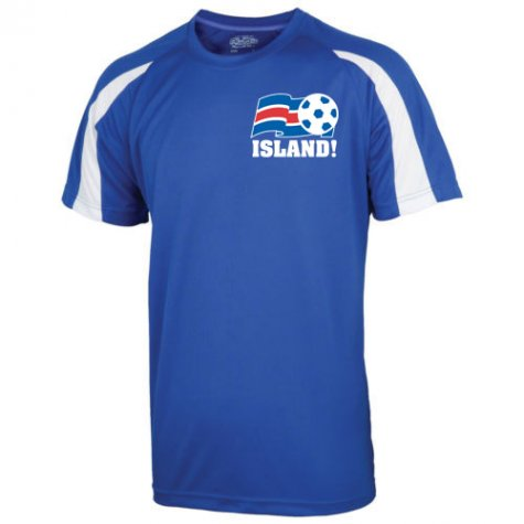 2016-17 Iceland Sports Training Jersey (Sigurdsson 10)