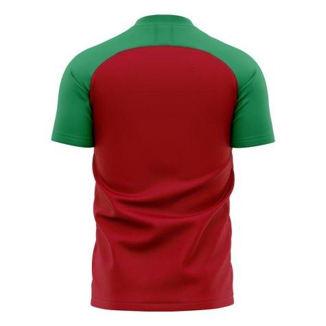Morocco 2020-2021 Home Concept Football Kit (Libero)