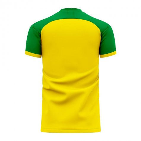Nantes 2020-2021 Home Concept Football Kit (Libero)