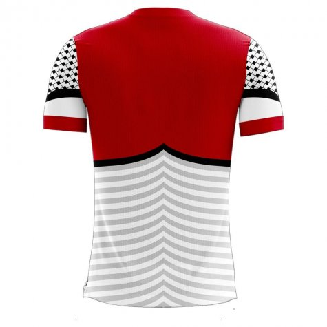 Palestine 2020-2021 Home Concept Football Kit (Libero) - Womens
