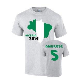 Nigeria 2014 Country Flag T-shirt (ambrose 5)