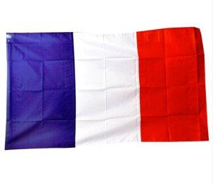 France World Cup Flag