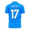 Napoli 1990s Home Concept Football Kit (Libero) (HAMSIK 17)
