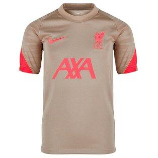 Liverpool 2021-2022 Training Shirt (Mystic Stone) - Kids