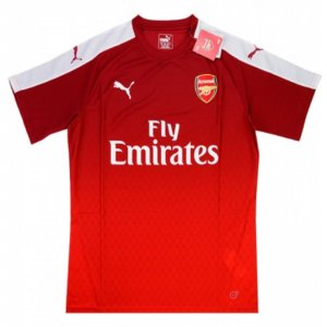 2015-16 Arsenal Puma Training Tee