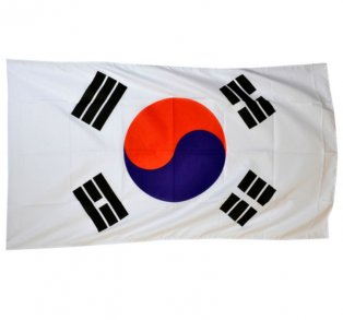 South Korea World Cup Flag